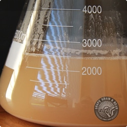 Liquid Wine Yeast